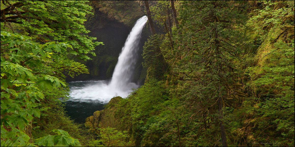 Eagle Creek, photo by Miles Hemstrom