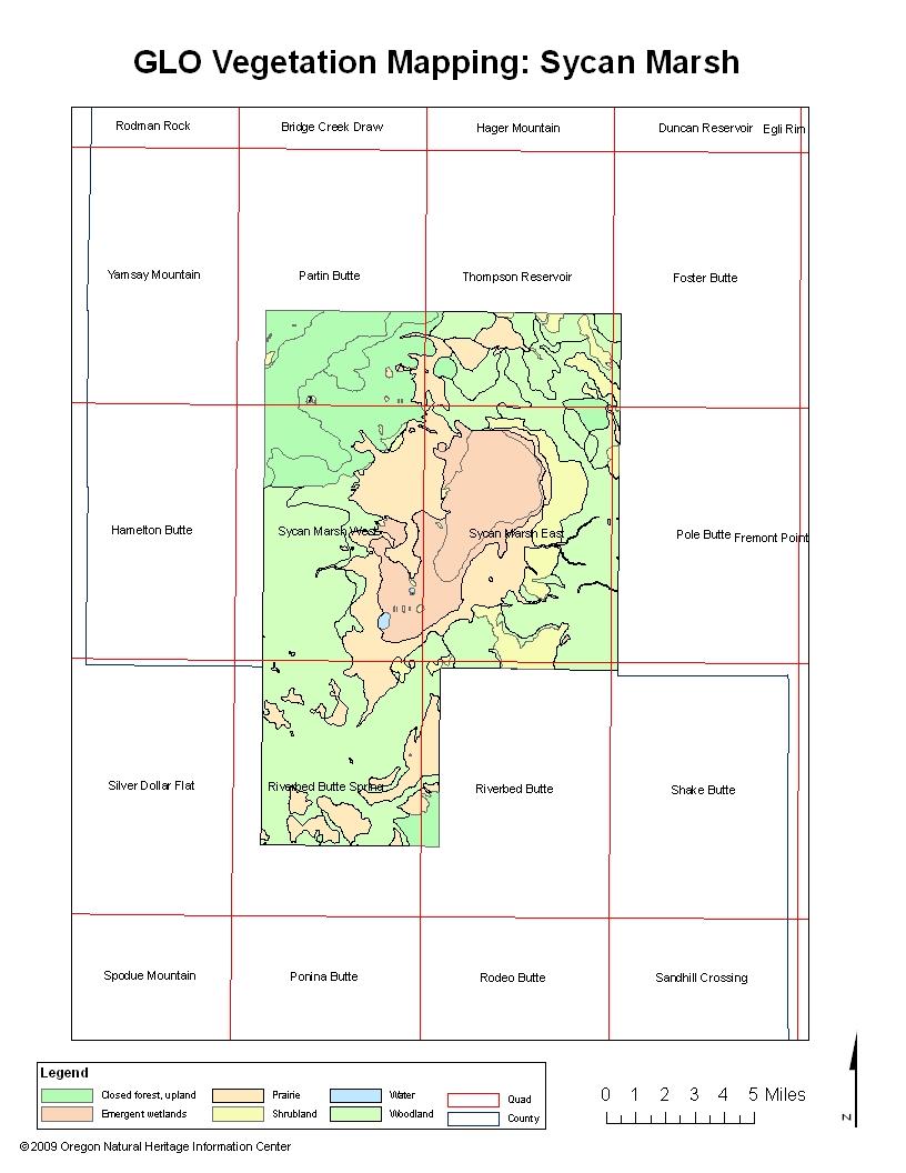 Sycan Marsh Historical Vegetation Map