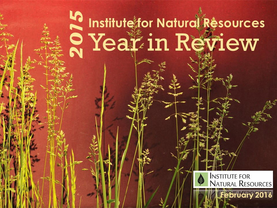 INR 2015 Year in Review Cover Page