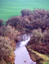Photo of Calapooia River (USDA ARS).