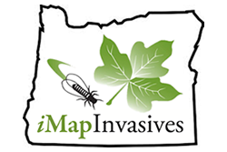 iMapInvasives logo