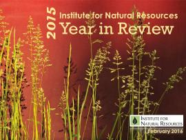INR 2015 Year in Review Cover
