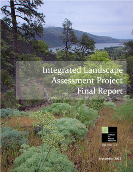ILAP final report cover